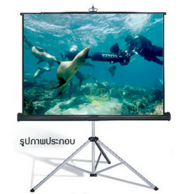 Tripod Screen Screenboy (70X70) 1:1